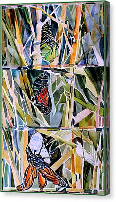 Monarch Butterfly Life Cycle Canvas Print by Mindy Newman