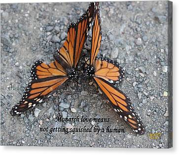 Monarch Love Means Not Getting Squished  Canvas Print