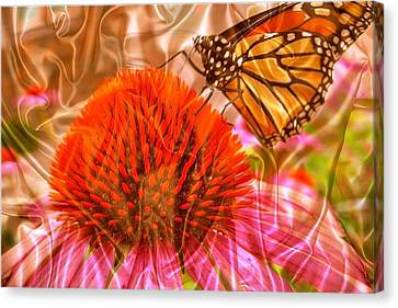 Monarch Mirage Canvas Print