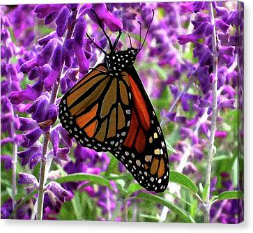 Canvas Print featuring the digital art Monarch by Timothy Bulone