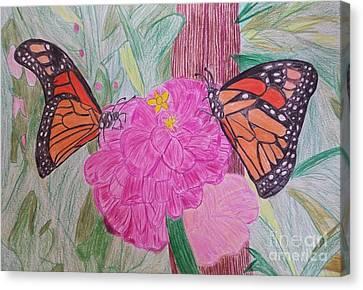 Monarchs On A Flower Canvas Print by Tammie Sisneros