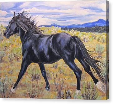 Monero Mustang Canvas Print by Melody Perez