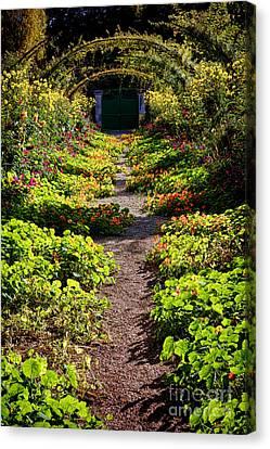 Monet Garden Path  Canvas Print by Olivier Le Queinec