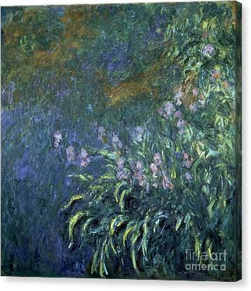 Monet: Irises By The Pond Canvas Print by Granger