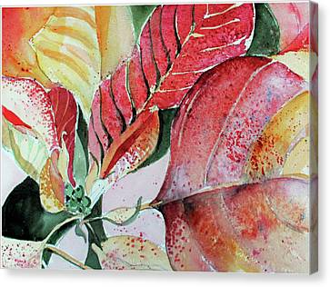 Monet Poinsettia Canvas Print by Mindy Newman