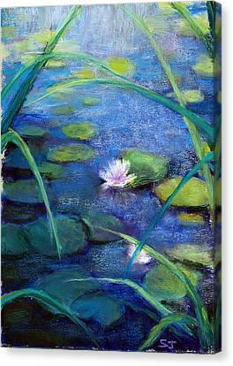 Monets Garden Canvas Print by Susan Jenkins