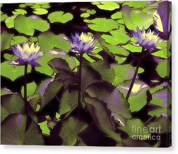 Monets Lillies Canvas Print by Karen Lewis