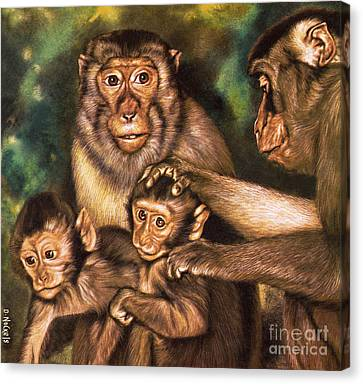 Caring Mother Canvas Print - Monkey Family by David Nockels