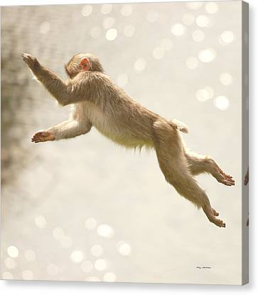Canvas Print featuring the photograph Monkey Jump by Roy  McPeak