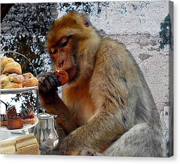 Monkey Tea Party Canvas Print by Jan Steadman-Jackson