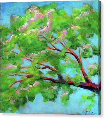 Monkeypod Dawn Canvas Print