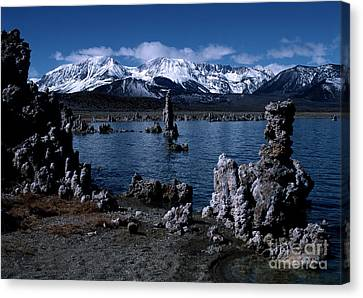 Mono Lake-signed Canvas Print by J L Woody Wooden