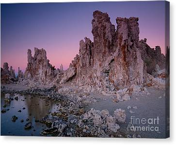 Mono Lake Tufas Canvas Print by Idaho Scenic Images Linda Lantzy
