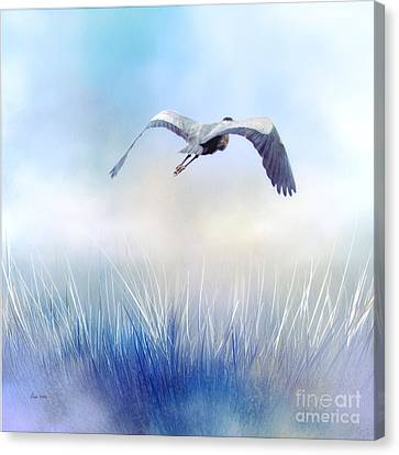 Monochrom Blue Heron Canvas Print