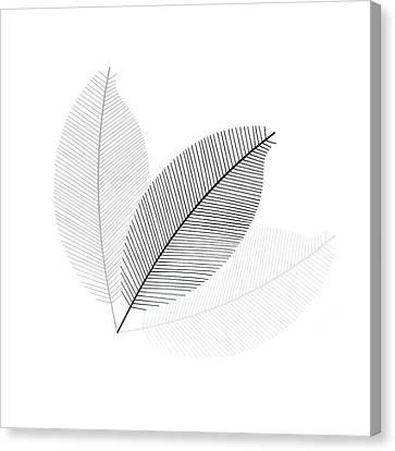 Monochrome Leaves Canvas Print