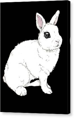 Monochrome Rabbit Canvas Print by Katrina Davis