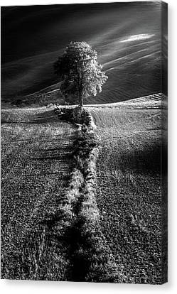 Monochrome Valley Canvas Print