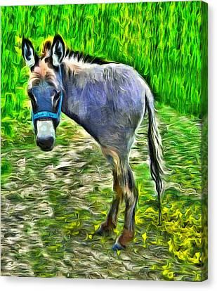 Monodonkey - Da Canvas Print