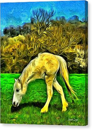 Monohorse - Da Canvas Print by Leonardo Digenio