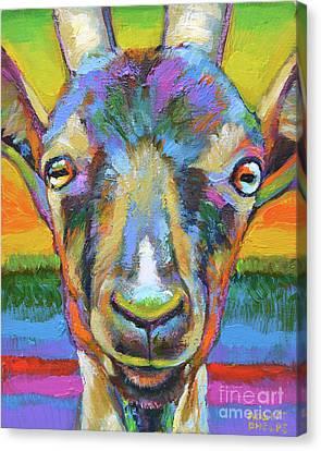 Monsieur Goat Canvas Print by Robert Phelps