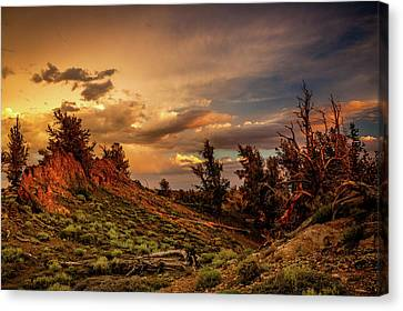 Monsoon Skies Over The Whites Canvas Print by Dan Holmes
