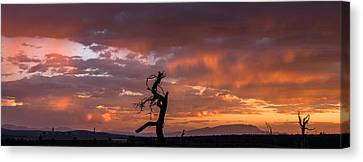 Monsoon Sunset Canvas Print