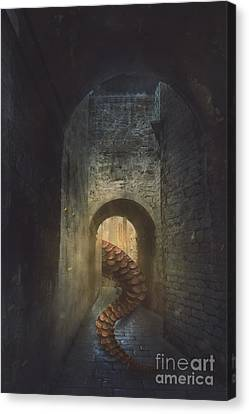 Petolas Canvas Print - Monster In Paris by Mythja Photography