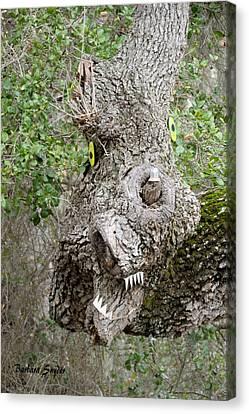 Monster Oak Tree Canvas Print by Barbara Snyder