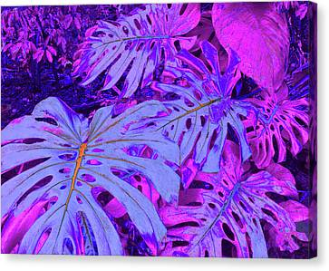 Monstera Leaves - In Violets Canvas Print by Kerri Ligatich