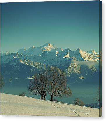 Mont Blanc Canvas Print by Lionel Albino