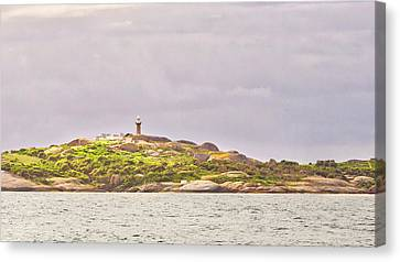 Montague Island - Nsw - Australia Canvas Print