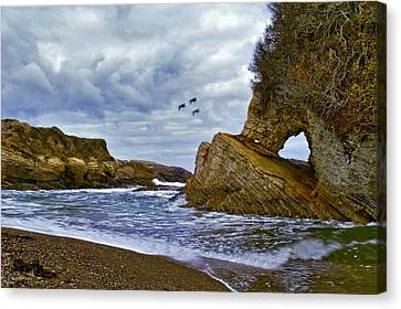 Canvas Print featuring the photograph Montana De Oro by Gary Brandes
