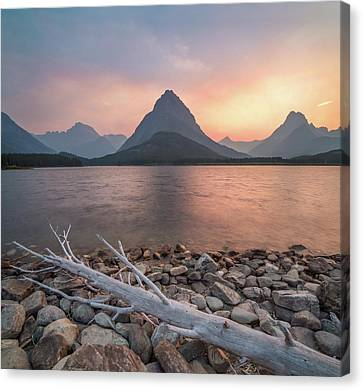 Glacier National Park Canvas Print - Montana Gold // Swiftcurrent Lake, Glacier National Park  by Nicholas Parker