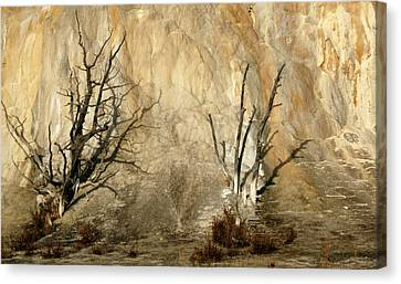 Montana Rock Wall Canvas Print by Suzanne Lorenz