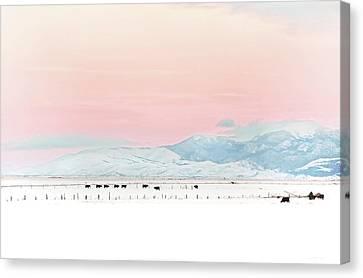 Montana Winter Sunset Sky Canvas Print