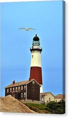 Montauk Lighthouse 2 Canvas Print by Dennis Clark