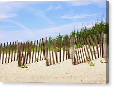 Montauk Sand Fence Canvas Print by Art Block Collections