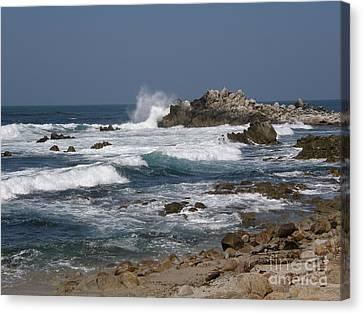 Monterey Coastline Canvas Print by Bev Conover