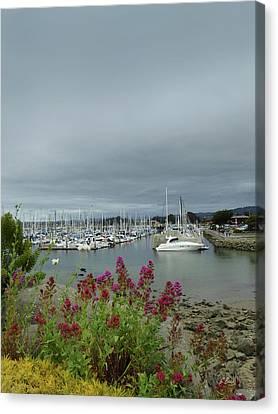 Monterey Harbor Canvas Print by Gordon Beck