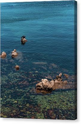Monterey Canvas Print