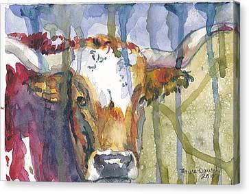Montrose Longhorn Canvas Print by P Maure Bausch