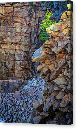 Monument Cove II Canvas Print by Rick Berk