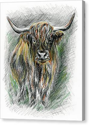 Moo Canvas Print by MM Anderson
