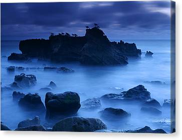 Moody Blue Canvas Print