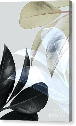 Moody Leaves Canvas Print