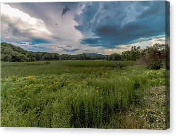 Moody Meadow Canvas Print