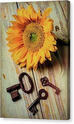 Moody Sunflower With Keys Canvas Print by Garry Gay