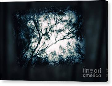 Moody Tablet Reflection Canvas Print