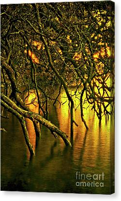 Moody Water Canvas Print