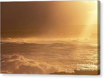 Moomomi Beach Sunset Canvas Print by William Waterfall - Printscapes